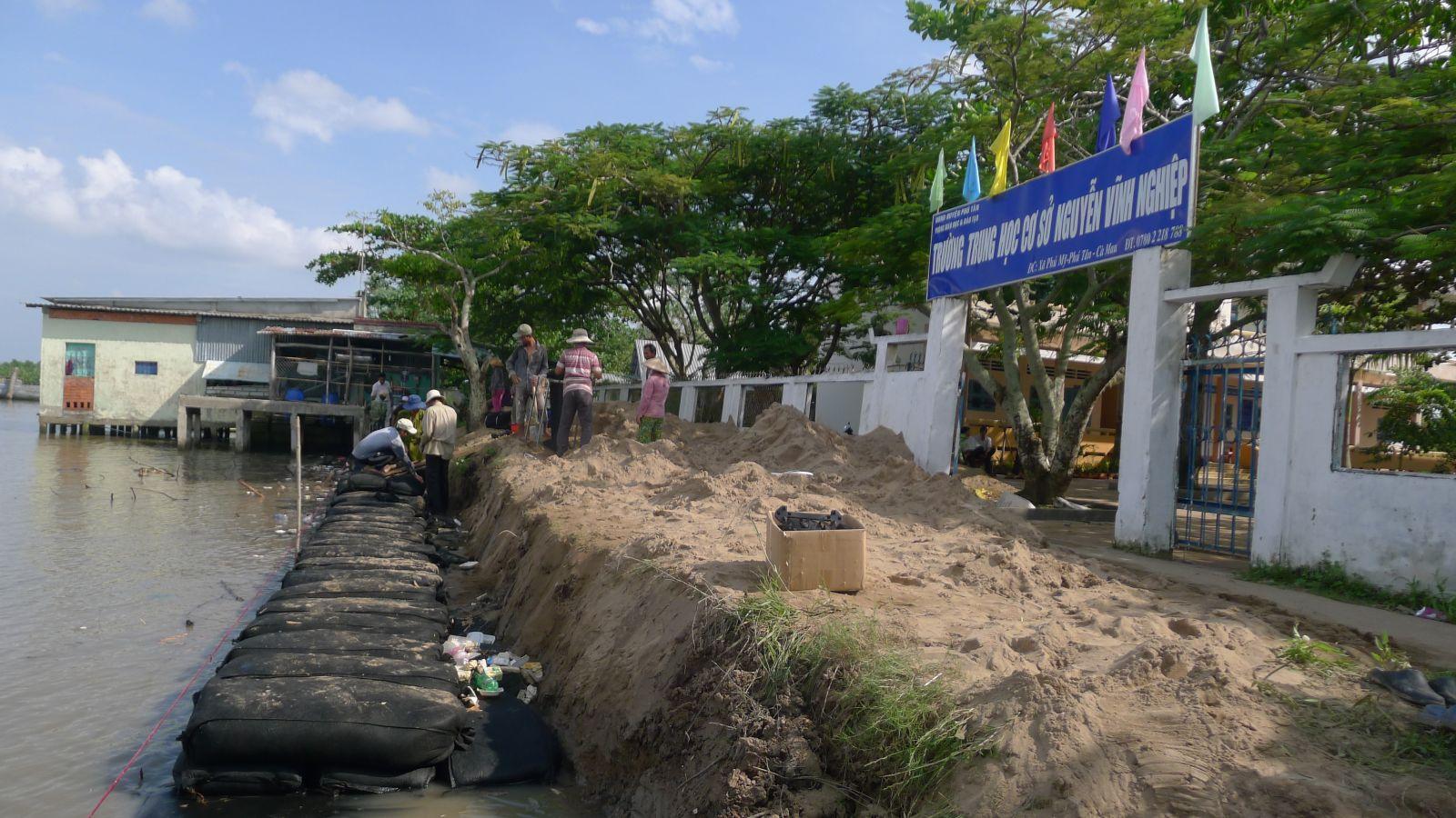 dự án bảo vệ bờ tại xã Phú Mỹ